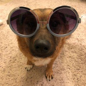 Brand new oversized sunglasses